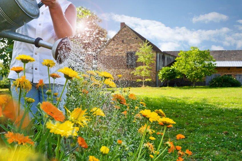 Der Sommer kommt – Zeit für einen Gartenwasserzähler