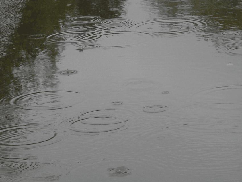 Starkregen und Überflutung – Schützen Sie Ihr Grundstück